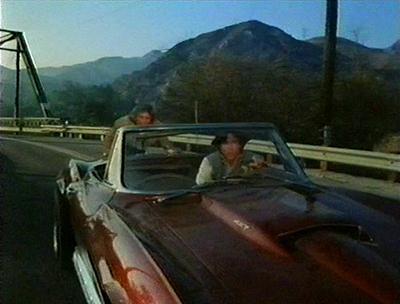 Deadman's Curve, 1978